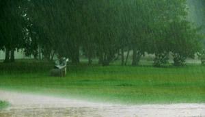lluvia-de-veran